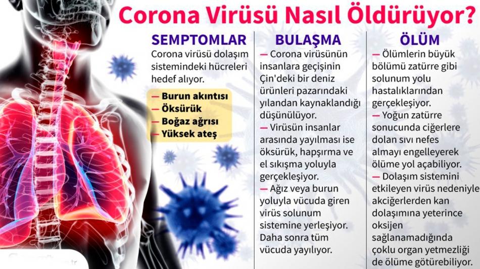 2020/03/1585165054_korona_corona.jpg