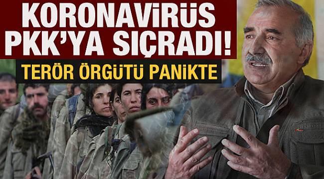 Koronavirüs PKK'ya sıçradı! Virüse kapılanlar intihar ediyor. Terör Örgütü panikte