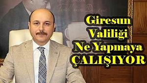 Türk Eğitim Sen'den Giresun Valiliği'ne Eleştiri