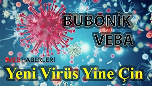 Yeni Virüs Yine Çin