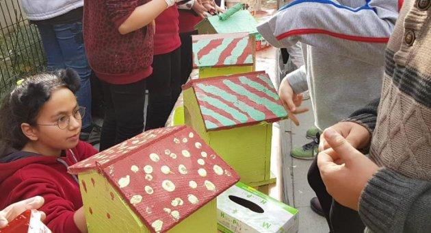 Kuş ve kedi evi yapımı